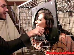 Caged tiedup sub spanked