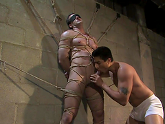 Guy's massaged before being tied up and blown in gay bondage scene