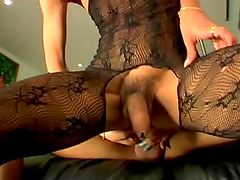 Hot shemale sluts sucking cock and fucking ass on the couch